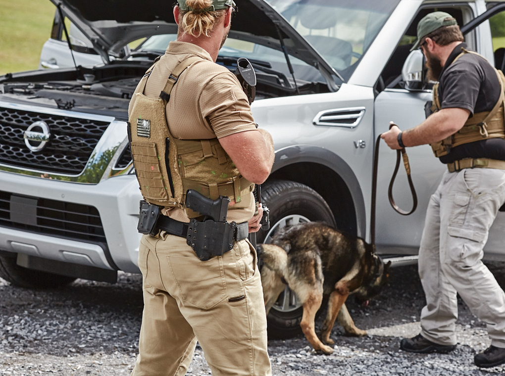 security personnel searching vehicle using explosive detection canine