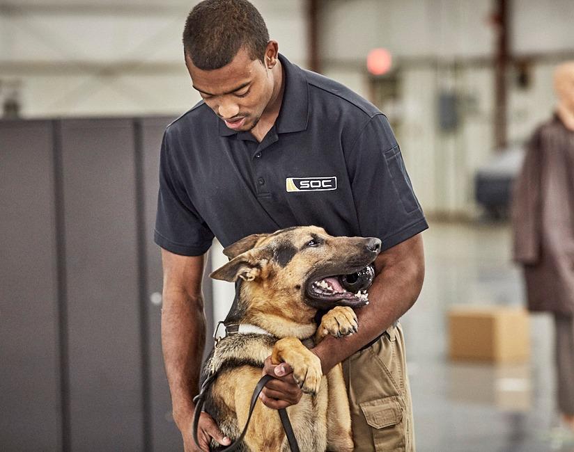 Canine handler and dog